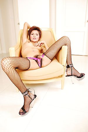 Exotic Tranny Phone Sex